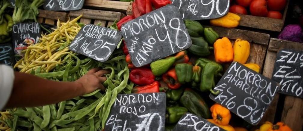 Alimentos y cambio climático: por qué comer solo productos de temporada